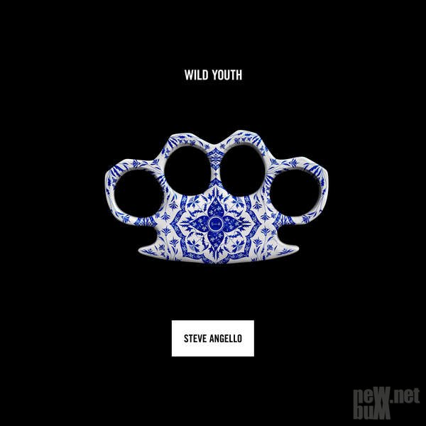 Steve Angello - Wild Youth (2016)