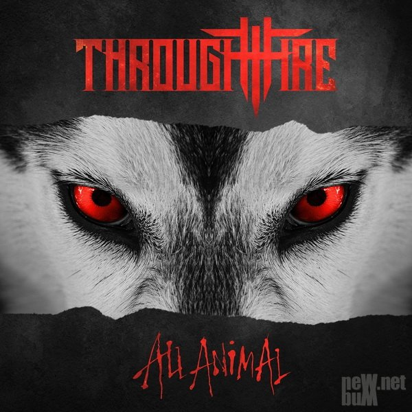 Through Fire - All Animal (2019)